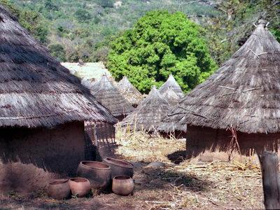 Circuit au Sénégal : Niokolo et Pays Bassari