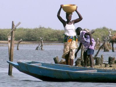 Circuit au Sénégal : au cœur des bolongs