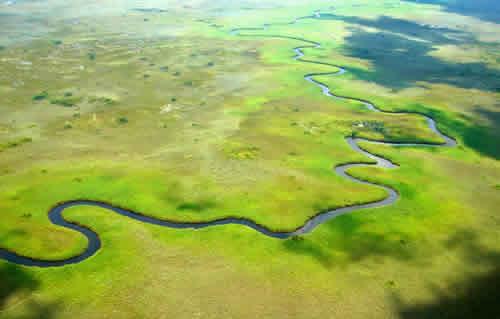 Safari de 6 jours au Botswana