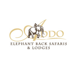 Addo Elephant Safari Lodge, Eastern Cape
