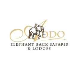 Addo Elephant Safari Lodge, Eastern Cape