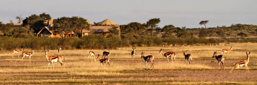Kalahari Tented Camp, Namibie