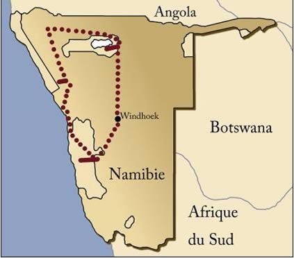 Safari en Namibie par avion