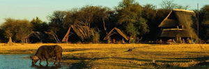 The Hide Safari Camp, Hwange Park, Zimbabwe