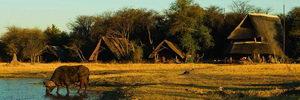 The Hide Safari Camp, Hwange Park, Zimbabwe