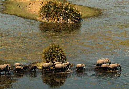 Botswana et Zimbabwe : de l'Okavango aux Chutes Victoria