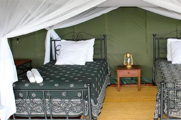 Ngorongoro Forest Tented Lodge (http://www.ngorongoroforestlodge.com)