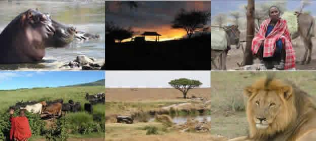 Safari en Tanzanie - Hakuna Matata - 10 jours
